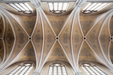 vaulted: RADOM, POLAND - JULY 4, 2009: Holy Virgin Mary Cathedrals vaulted ceiling Editorial