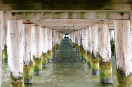 longest: Underneath the Sopot pier in Poland, the longest wooden pier in Europe