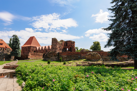 stare miasto: TORUN, POLAND - JULY 7, 2009: Ruins of a teutonic order knights castle. Its only preserved element is the Gdanisko tower used in the past as a lavatory