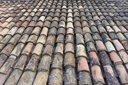 efflorescence: Algae, lichen and efflorescence deposits on old clay roof tiles