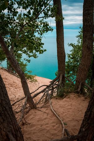 A shot of Lake Michigan through the trees at the top of the Sleeping Bear Dunes