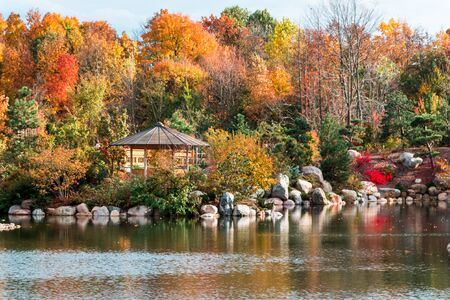Landscape of the autumn landscape in the japanese gardens at the Frederik Meijer Gardens in Grand Rapids Michigan