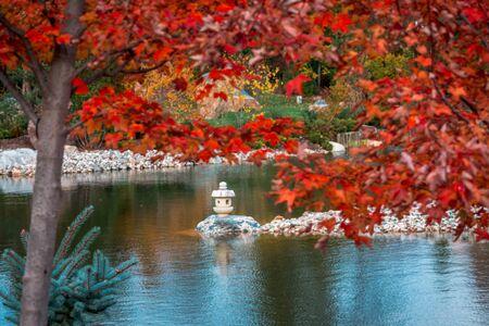 Shot of a stone lantern statue on a peninsula shot through the trees Stock fotó