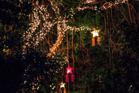 Christmas lights in the tropical gardens in the Frederik Meijer Gardens Stock fotó