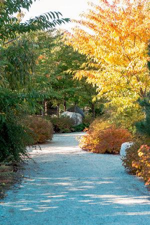 Autumn path through the Frederik Meijer Gardens