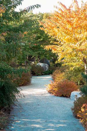 Autumn path through the japanese gardens