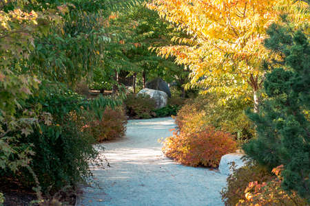 Path through the japanese garden in the fall in Grand Rapids Michigan