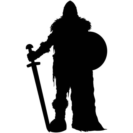 Illustration stylized nordic warrior with a sword and a shield in winter fur equipment