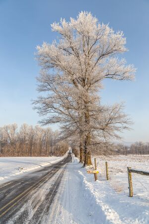 Winter Landscape Road