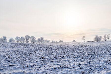 Landscape in Winter Stockfoto