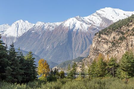 Himalayas in Nepal with Fall Leaves