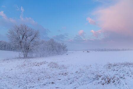 Pastel Colored Sunrise in Pennsylvania Farmland