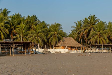Palm Trees and Thatch Roof Pavilion on the Beach in Guatemala