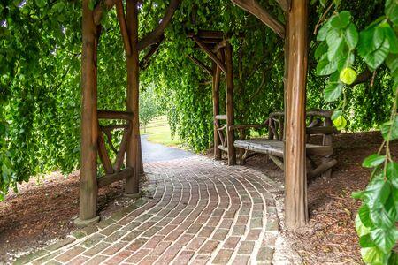 Bench in Arbor Under a Tree Stockfoto