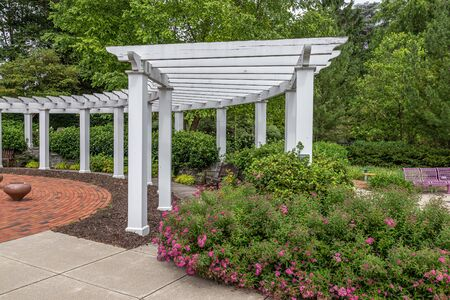 Curved Arbor in Garden with Roses
