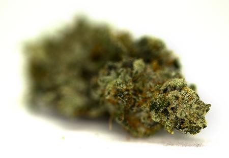 Isolated Macro Shot of High Quality Marijuana Bud
