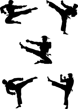china art: Vector illustration of karate fighters