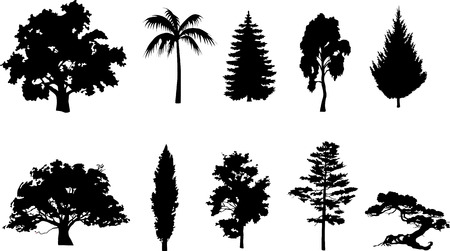 Trees set Stock Vector - 5224421