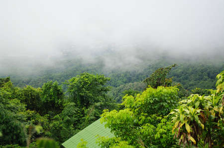 Mist over the forest in north of Thailand Stock Photo