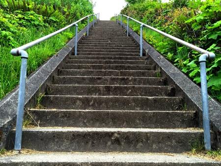 Long Straight Stairway