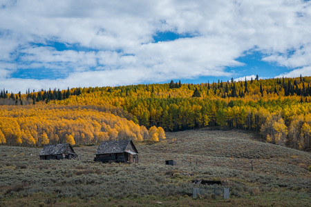 Abandoned shack on the mountain side near Gunnison Colorado in autumn