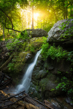 Small waterfall at sunrise in an scenic forest Stock Photo