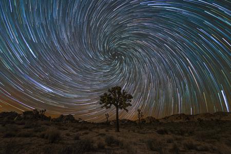 Vortex Spiral Star Trail over een Joshua Tree Stockfoto