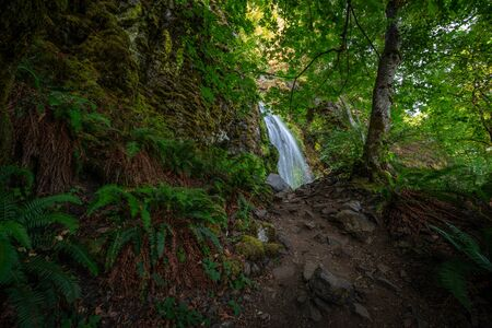 Hiking trail leading towards Lancaster Falls along the Columbia River Gorge in Oregon Stock Photo