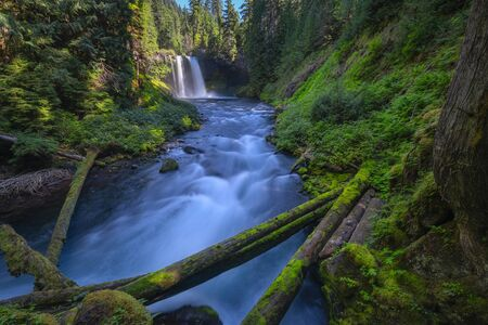 Beautiful scenic view along the McKenzie RIver in Oregon