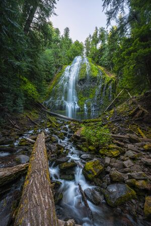Surreal waterfall known as proxy falls in Oregon. Stock fotó