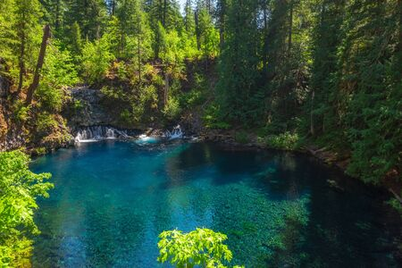 Tamolitch Falls and the clear Blue Pool along the McKenzie River in Oregon