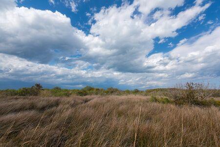 Clouds passing over the marsh at Back Bay National Wildlife Refuge Standard-Bild