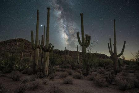 Beautiful night sky over the desert near Tuscon Arizona