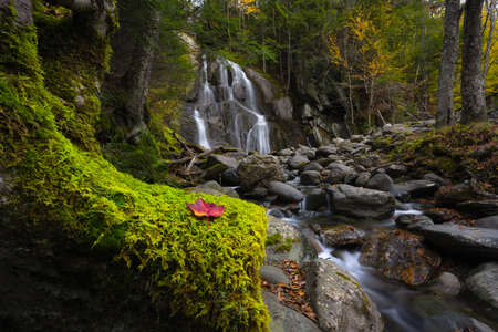 Moss and autumn colors at Moss Glen Falls in Vermont