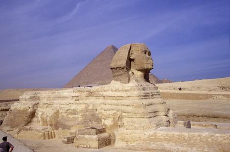 esfinge: Esfinge, las Pirámides de Giza, Egipto.