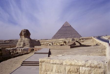 sphinx: Esfinge, las Pirámides de Giza, Egipto.