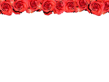 affections: Frame: Red roses - symbol picture Love  Valentine  frame: red rose - symbolic image for love, afection and Valentines Day.