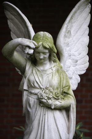 engel: Impressions: Dorotheenstaedtischer Cemetery, Berlin-Mitte. Editorial