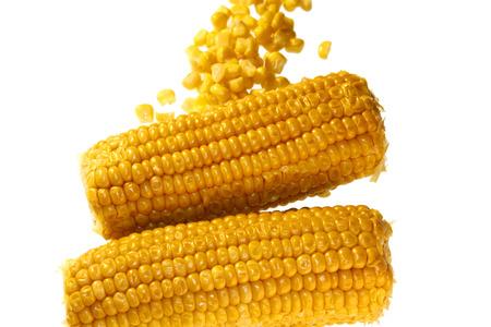 maize: Corncobs maize corn cob - Symbolic Foods. Stock Photo