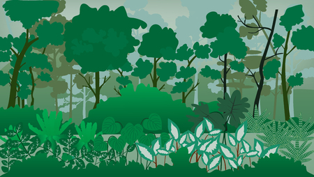 Forest landscape vector illustration.Many tree in the jungle.Shrubs in the forest.
