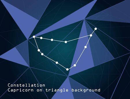Symbol capricorn zodiac sign on triangle background,vector illustration.