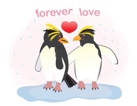 Happy Valentine's day greeting card with couple macaroni penguin,vector illustration.