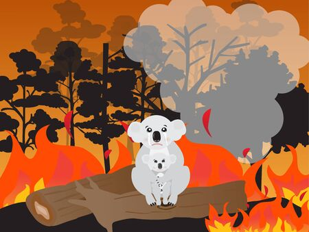 Koala bear and her baby sitting on the dry tree among forest fire,vector illustration.Australia forest fire.