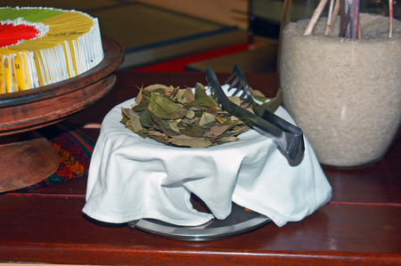 traditional remedy: Coca Leaves Served at Tea Time