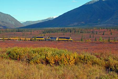 Alaska Railroad - Denali NPS