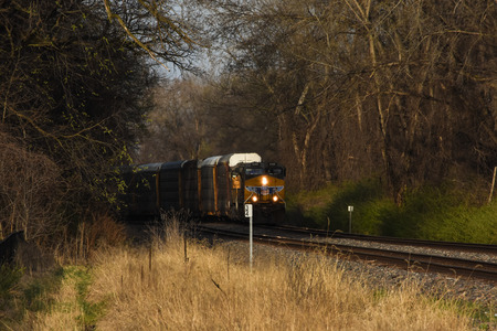 forest railroad: Train emerging from the woods
