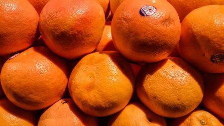 florida citrus: Florida oranges