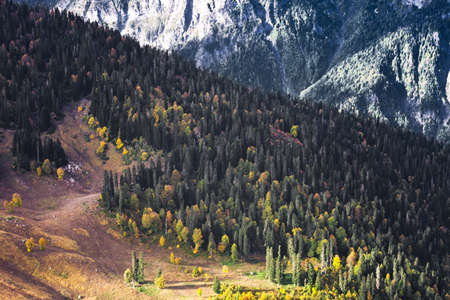 Mountains, the rays of the sun illuminate the forest in the mountains, patches of light, the autumn landscape.