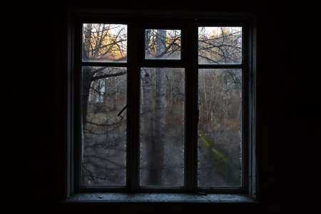 View from the window in an abandoned house through the wet glass at the trees. Dark background. Symbol of depression and hope.