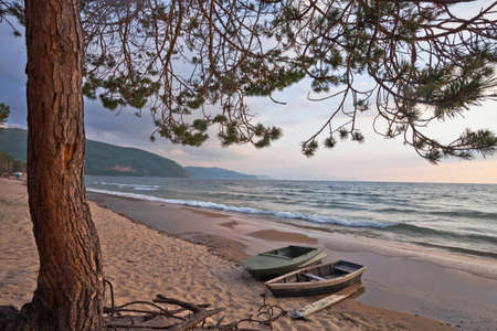 Pine branches and boats on the sandy beach of Siberian Lake Baikal Banque d'images